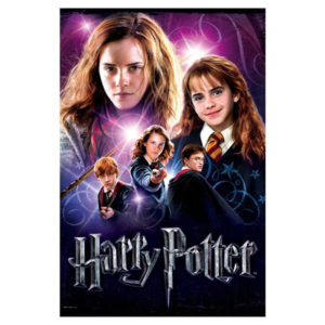 Puzzle - Harry Potter : Hermione